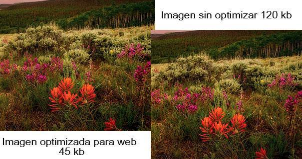 Optimizar imágenes web